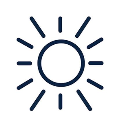 Pennington Smart Seed Dense Shade Light Requirements