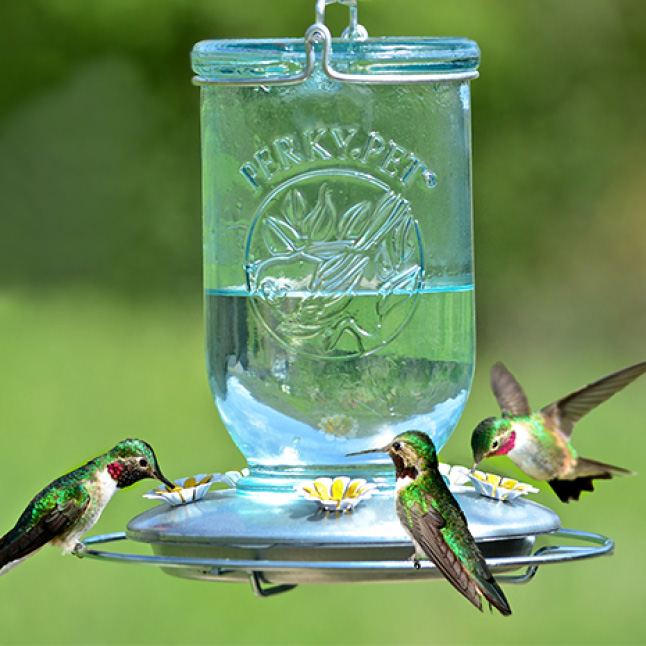 room for multiple birds, decorative glass hummingbird feeders