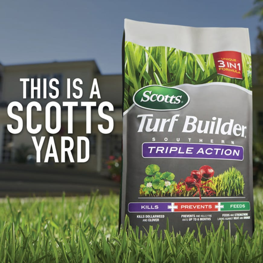 This is a Scotts Yard