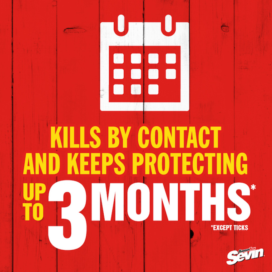 Sevin Insect Killer Concentrate lasting protection