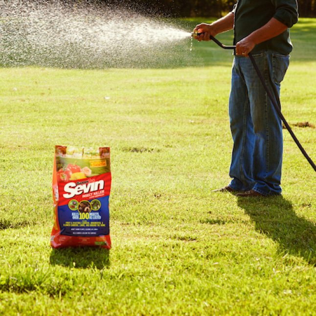Sevin Insect Killer Lawn Granules step 4 application