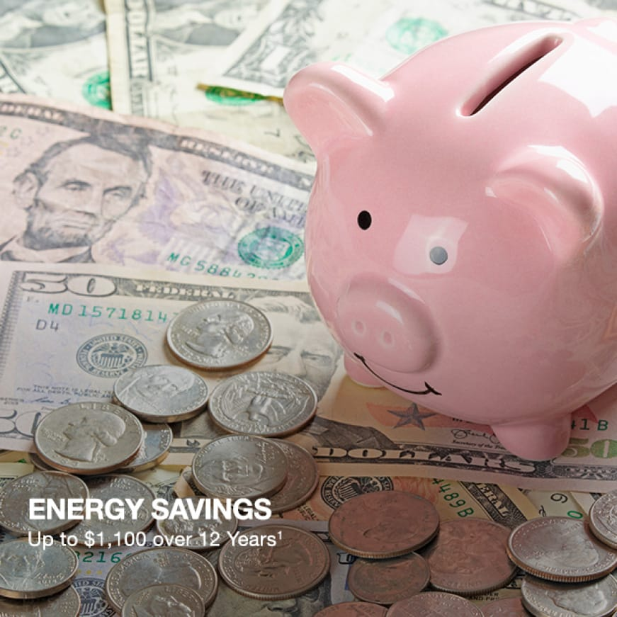 Energy Savings up to $1,100 for 12 Years