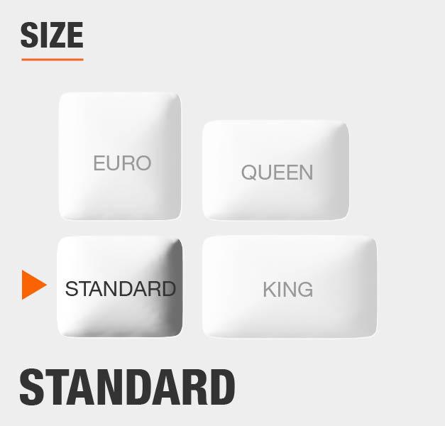 Size Standard