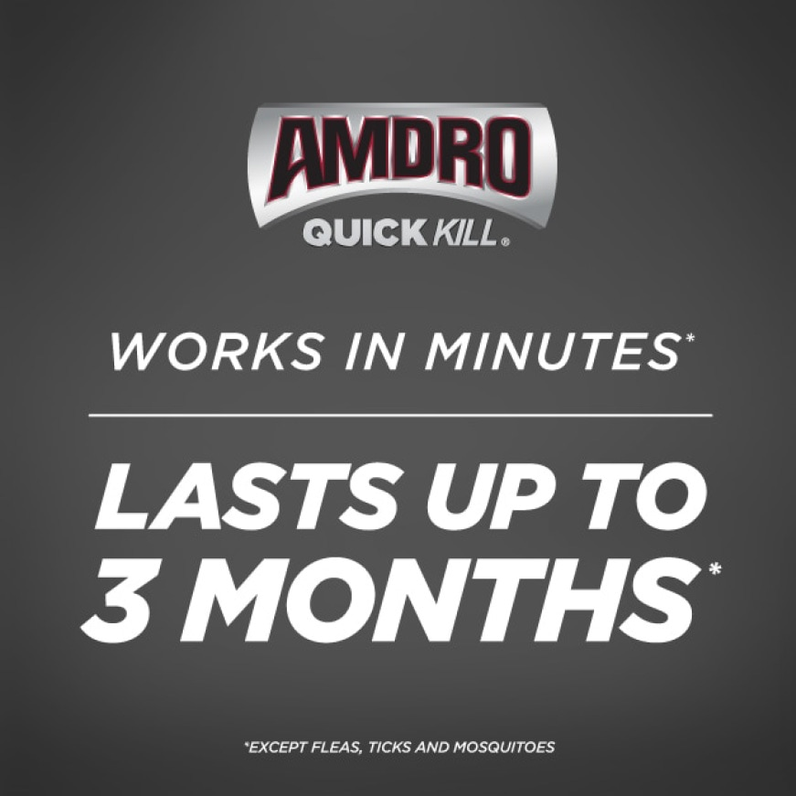 Works in minutes and lasts up to 3 months