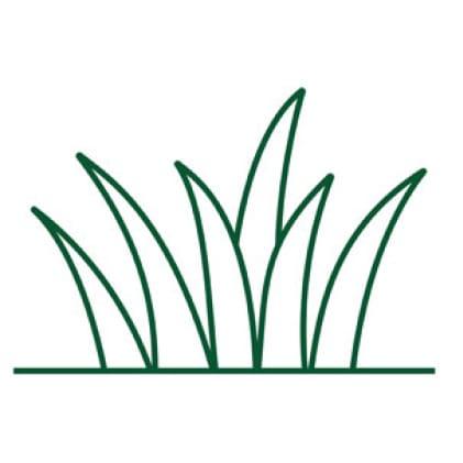 Grass Types Icon
