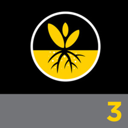 Dig & Plant Icon