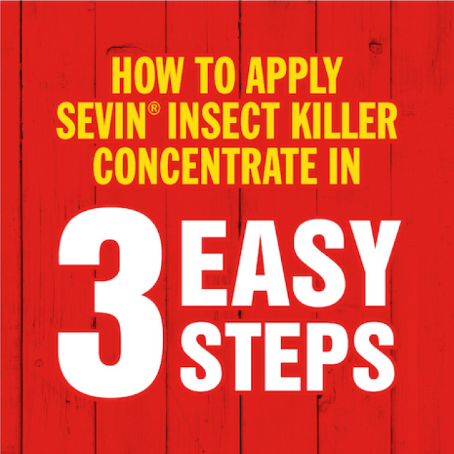 Sevin Insect Killer Concentrate how to apply