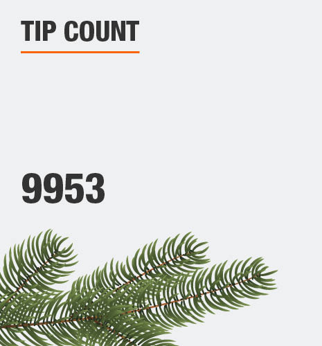 The tip count is 9953