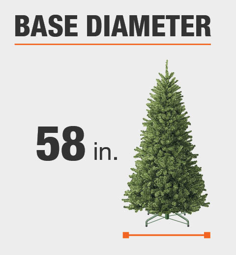 The base diameter of this tree is 58 in.