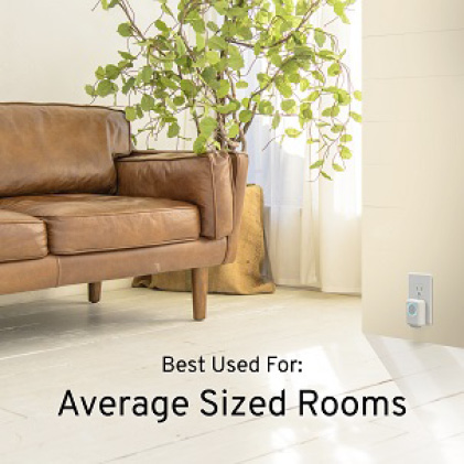 Average Sized Rooms