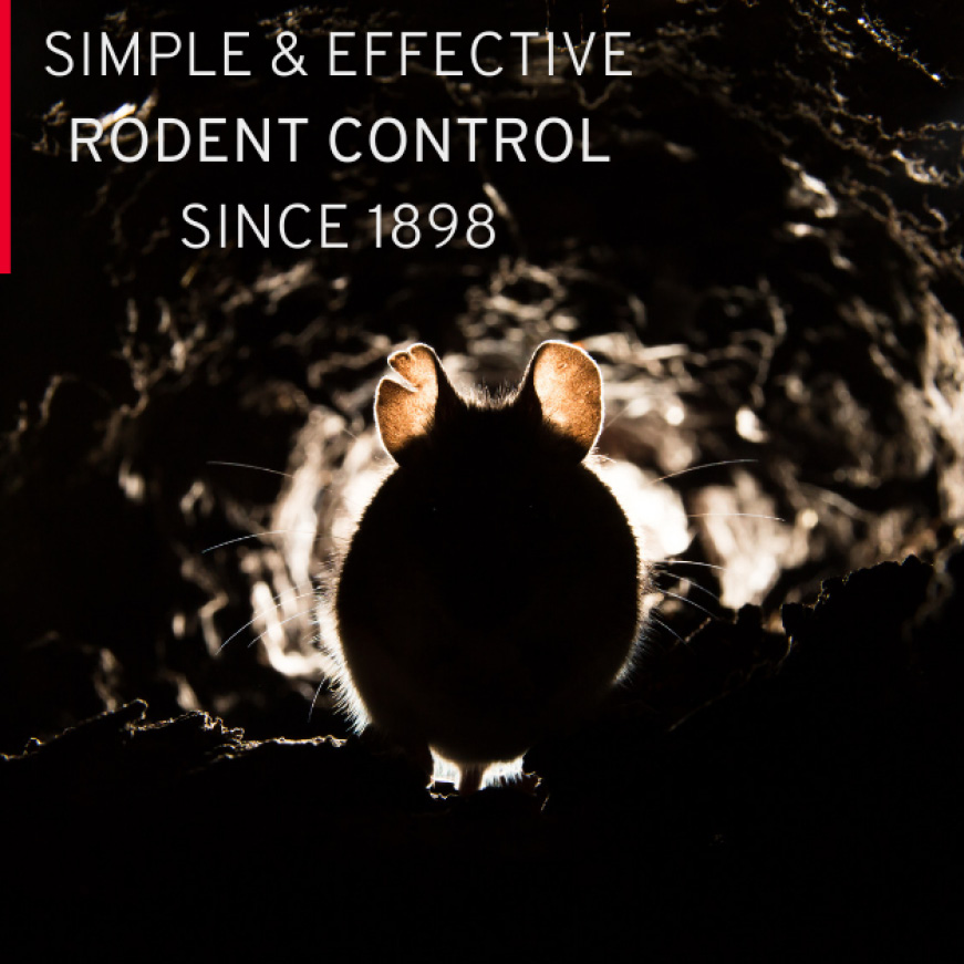 We Know Rodents, providing simple and effective rodent control since 1898