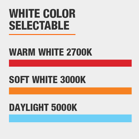 Light with Adjustable Color Temperature