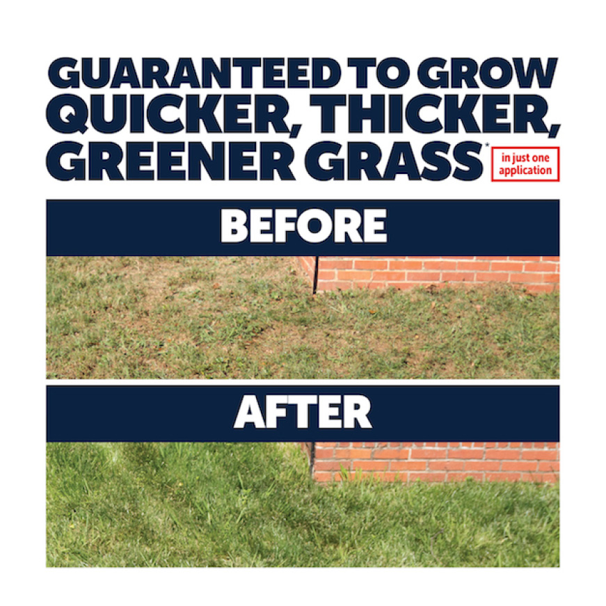 Pennington Sun and Shade Lawn Booster shows quick results