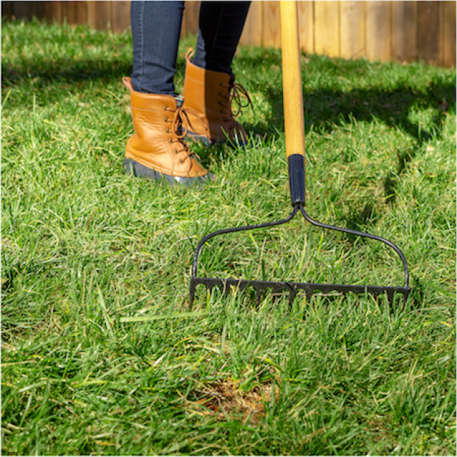 Pennington Sun and Shade Lawn Booster prep involves removing weeds and mowing lawn before applying seed