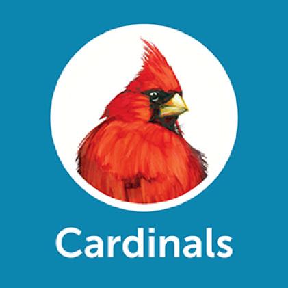 Pennington Ultimate Songbird Blend Cardinals