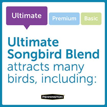 Pennington Ultimate Songbird Blend Bird Types