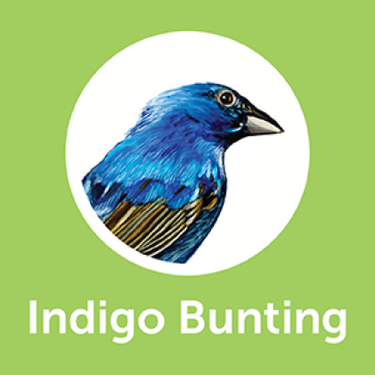 Pennington Ultimate Waste Free Nut and Fruit Blend Indigo Buntings