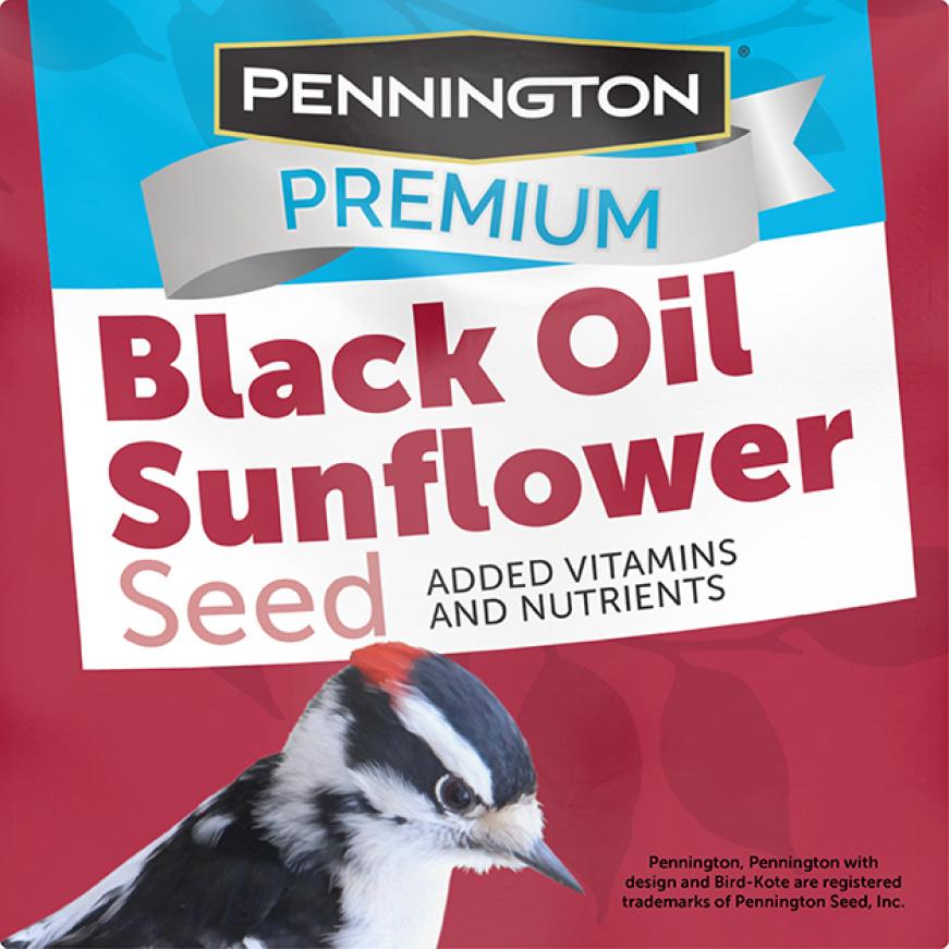 Pennington Premium Black Oil Sunflower Seed