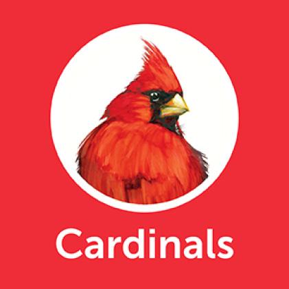 Pennington Premium Birder's Blend Cardinals