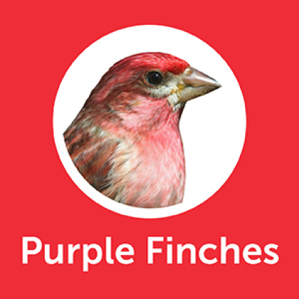 Pennington Premium Birder's Blend Purple Finches