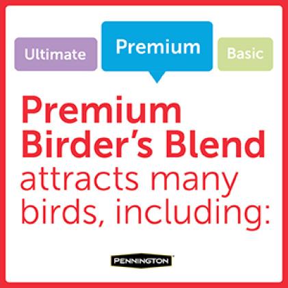 Pennington Premium Birder's Blend Bird Types