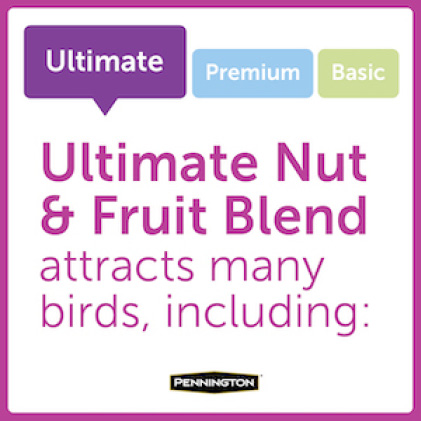 Pennington Ultimate Nut and Fruit Blend Bird Types