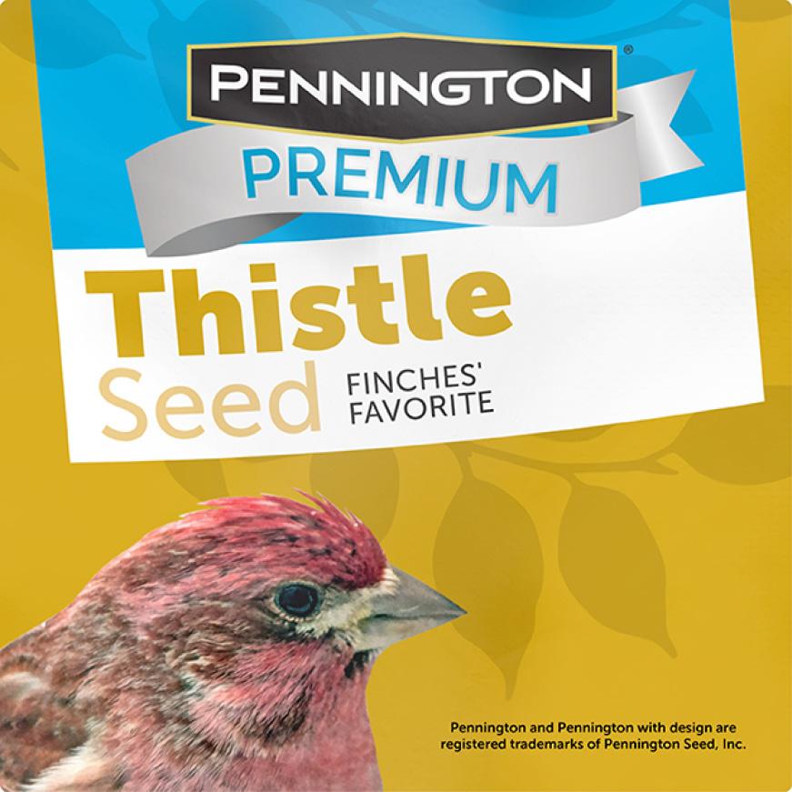 Pennington Premium Thistle Seed for Birds