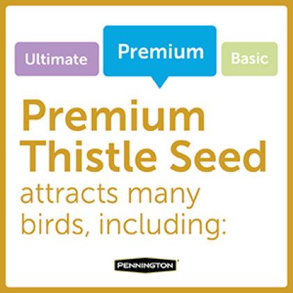 Pennington Premium Thistle Seed for Birds Bird Types
