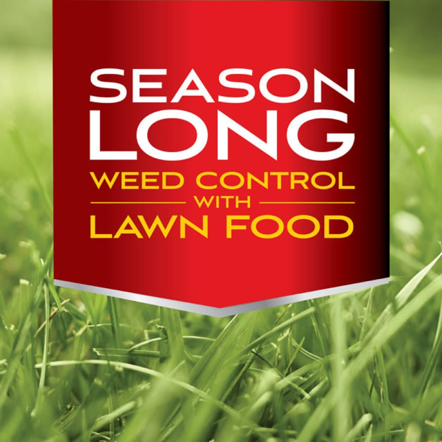 Season Long Weed Control with Lawn Food