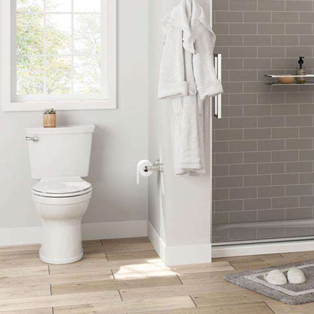 High-Efficiency Champion Toilet