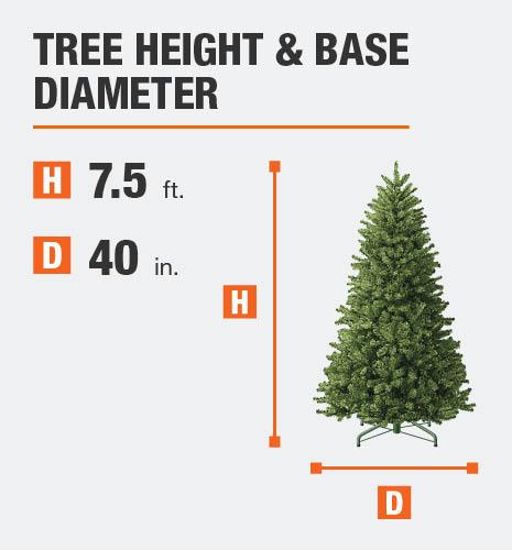 Tree Height= 7.5 feet Base Diameter= 40 inches