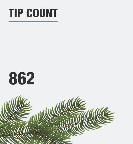 The tip count is 862