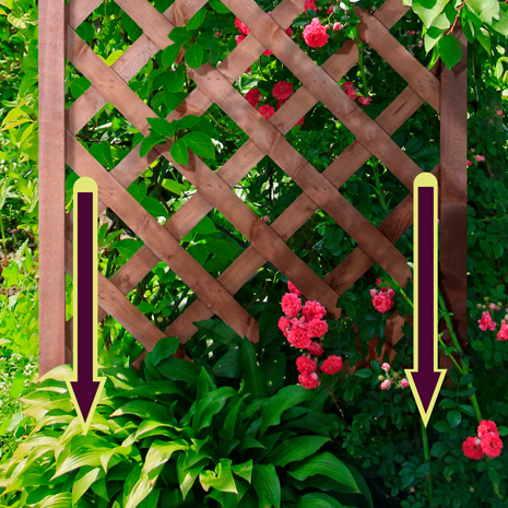 a diagram showing how to insert the trellis into the ground