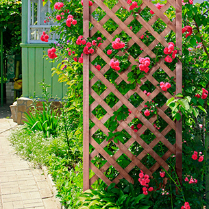 A lifestyle shot showing the trellis in a garden assiting a climbing pink flowering plant