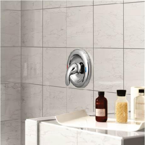 Moen Adler 1 Handle 1 Spray Shower Faucet With Valve In