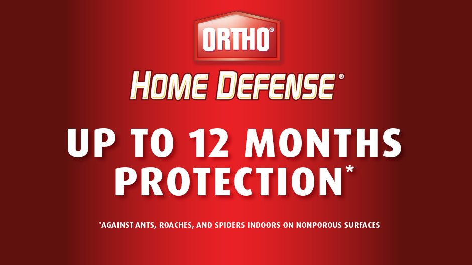 Ortho Home Defense Max 133 Gal Perimeter And Indoor Insect Killer