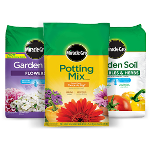 Miracle-Gro Shake 'n Feed 4 5 lbs  All Purpose Plant Food