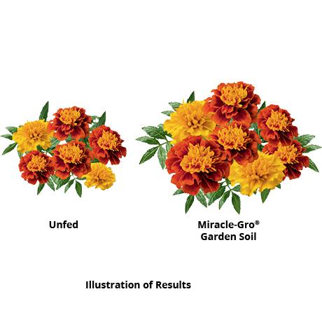 Miracle-Gro 0 75 cu  ft  All Purpose Garden Soil-75030430