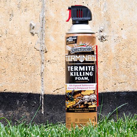 Spectracide Terminate 16 Oz Termite Killing Foam Hg 53370 7 The Home Depot