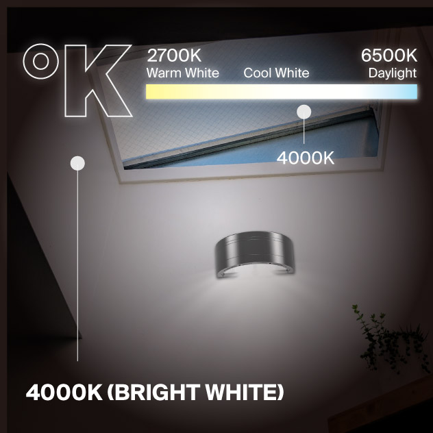Probrite Architectural LED Wall Pack Outdoor Security Lighting