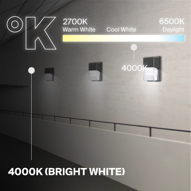 Probrite LYRA20 LED Wall Pack 4000K