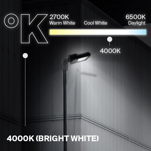 Probrite NOVA100 LED Area Light 4000K