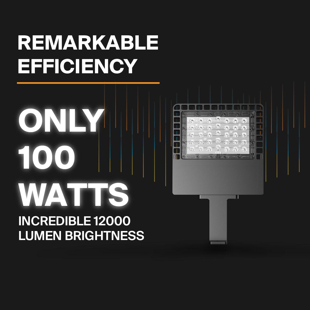 Probrite NOVA100 LED Area Light Efficient