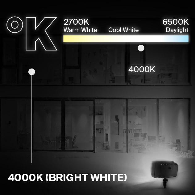 Probrite PowerFlood50 LED Flood Light 4000K