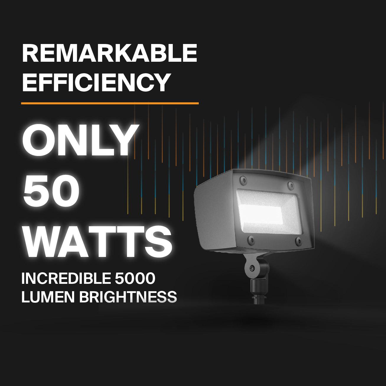 Probrite Powerflood50 LED Flood Light Efficient