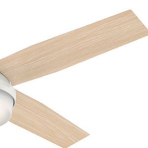 The Hunter Dempsey modern ceiling fan with lights has two blade sides.