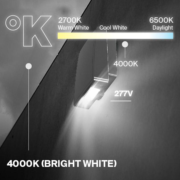 Probrite Stealth28 LED Wall Pack 4000K