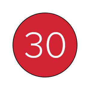 30 user codes icon.