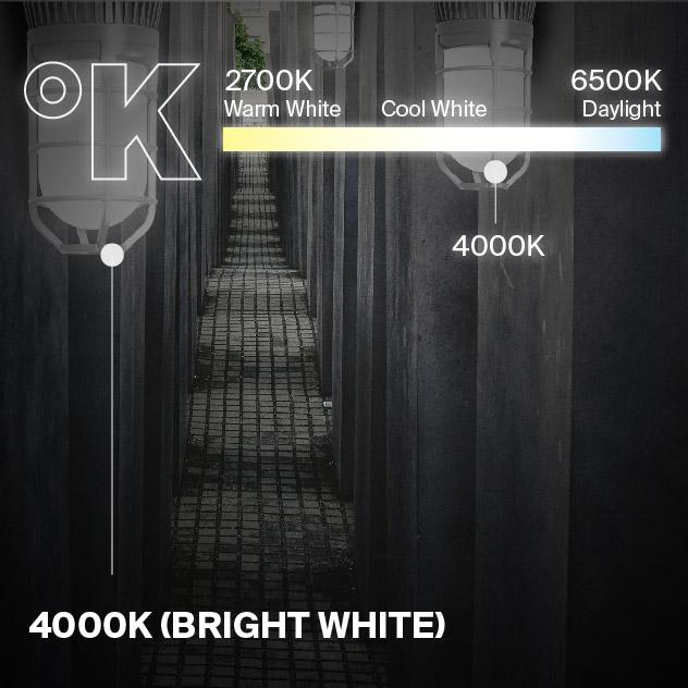 Probrite Vapor14 LED Ceiling Light 4000K