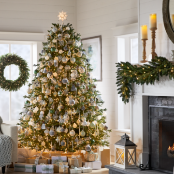 CHRISTMAS TREES Find the Right Tree for Your Hoilday